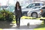 Сандра Бълок разхожда кучето си
