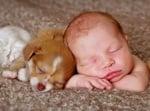 Сладко бебе с кученце