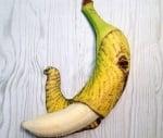 Слон от банан