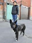 Спасено куче Шави
