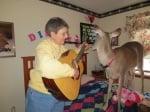Свирят на китара в стаята на еленчето