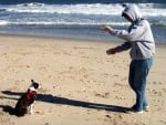 Тренировка на глухо куче