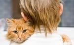 2-Котката търка бузи в нас
