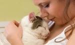 1-Търкане котката с главичка
