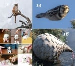 Удивителни факти за животните