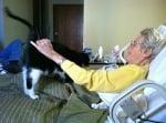 В болницата с котка