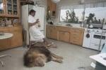 В кухнята лъва Нил