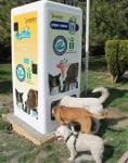 Вендинг машина храни бездомни кучета срещу изхвърлени пластмасови бутилки