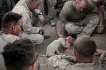 Войници с кученце