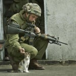 Войник гали котка