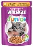 """Whiskas Junior"" - Пауч за малки котки с различни вкусове"