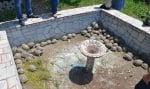 """""""Зелени балкани"""" спасиха от смърт 120 костенурки"""