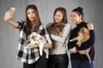 Златни момичета осиновяване на кученце